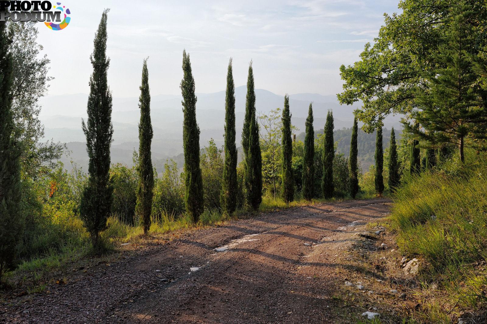 дорога в Италии  № 2221778 загрузить