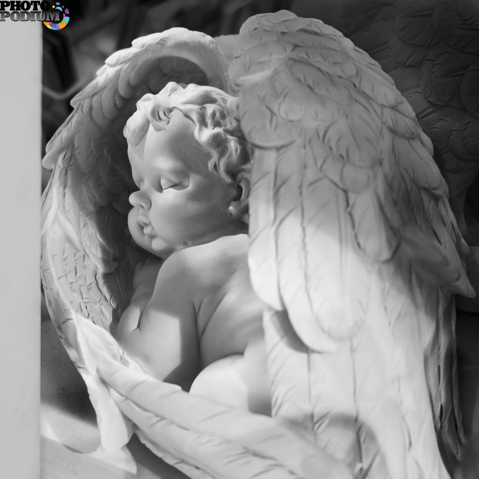 Красивые картинки спящий ангел