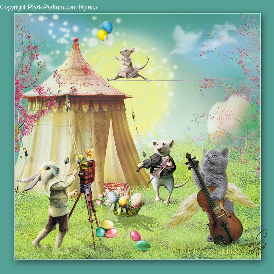 Cello, Fiddle, Musical Instrument, Violin, Animal, Canine, Chihuahua