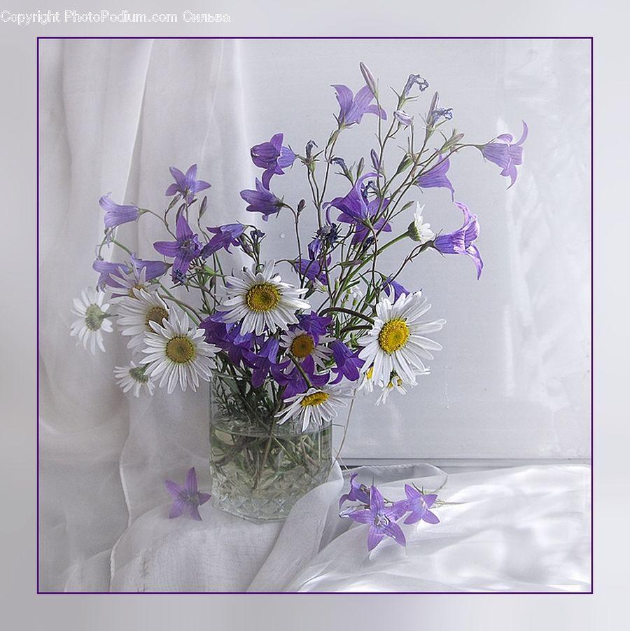 Открытки с полевыми цветами женщине красивые