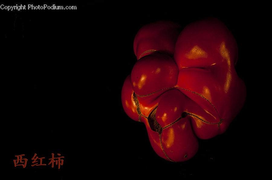 Bell Pepper, Pepper, Produce, Vegetable, Floral Design, Fruit, Blossom