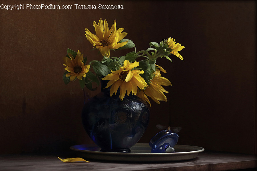 Flower Arrangement, Ikebana, Plant, Potted Plant, Vase