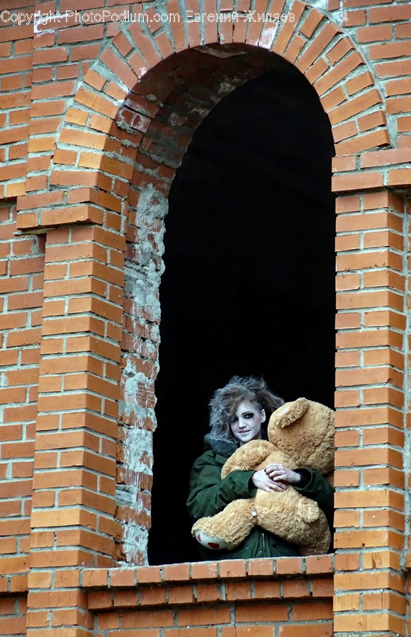 Teddy Bear, Toy, Window, Brick, Female