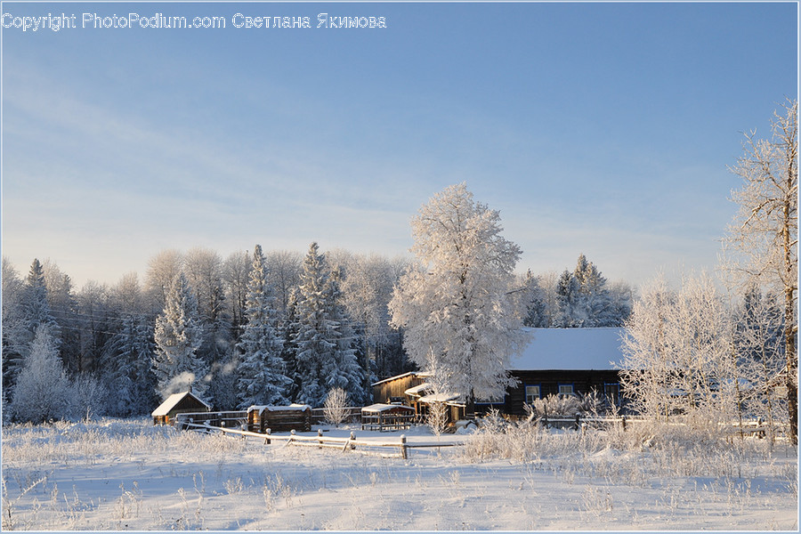 Frost, Ice, Outdoors, Snow, Landscape