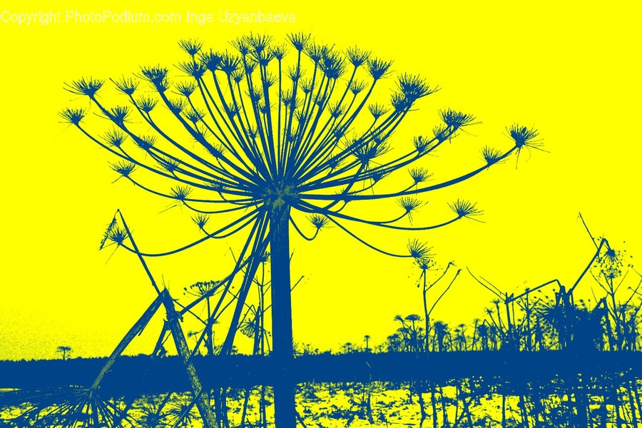 Amusement Park, Theme Park, Plant, Ferris Wheel