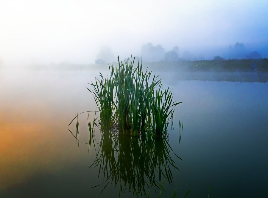 Nature, Outdoors, Weather, Fog, Mist