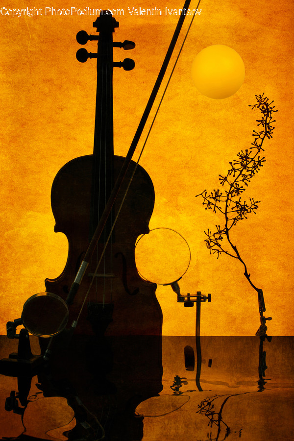 Musical Instrument, Leisure Activities, Cello, Fiddle, Violin