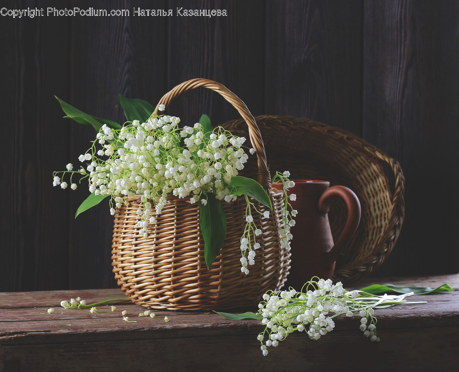 Basket, Plant, Shopping Basket, Flower, Blossom