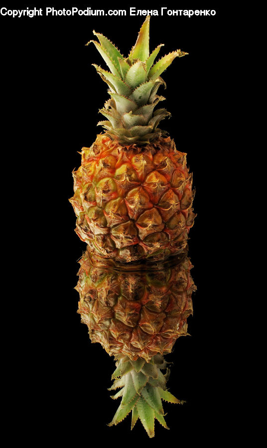 Fruit, Pineapple