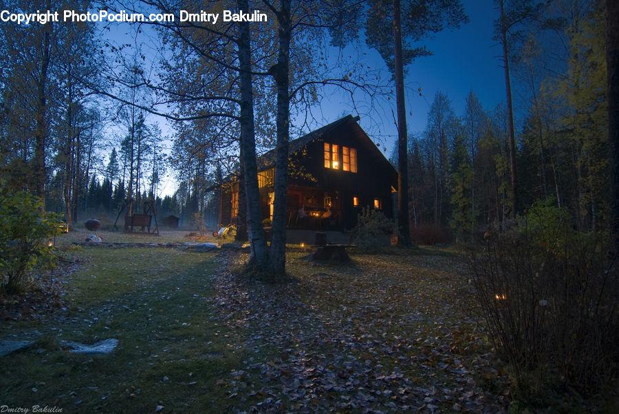 снять одинокий домик в лесу этом